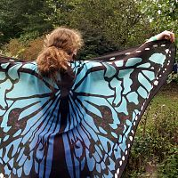 Summer Blue Butterfly Fairy Wings