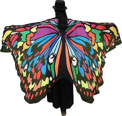 Rainbow Butterfly Fairy Wings - Butterfly Fairy Wings, Butterflies and Dragonflies