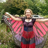 Ruby Red Butterfly Fairy Wings