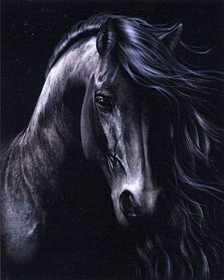 """The Black"" Cross Stitch Pattern - Counted Cross Stitch Patterns - Celtic Patterns, Pagan Patterns, Fantasy Patterns and more, Horses"