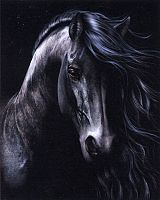 """The Black"" Cross Stitch Pattern - Cross-stitch Patterns, Horses"