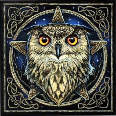 """Wise One"" Owl Cross Stitch Pattern - Counted Cross Stitch Patterns - Celtic Patterns, Pagan Patterns, Fantasy Patterns and more, Owls"