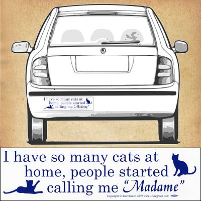"""So Many Cats"" Bumper Sticker"