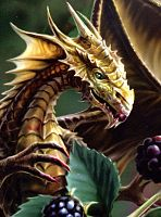 Blackberry Dragon Birthday Card - Birthday Cards, Here Be Dragons!