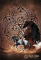 Celtic Horse Blank Book - Soft Journals, Horses, Clearance
