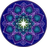 Star Seed Window Sticker