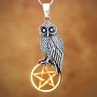 Silver Owl with Bone Pentacle Pendant