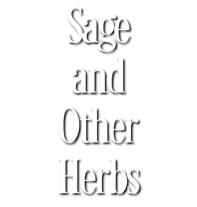 Sage and Other Herbs